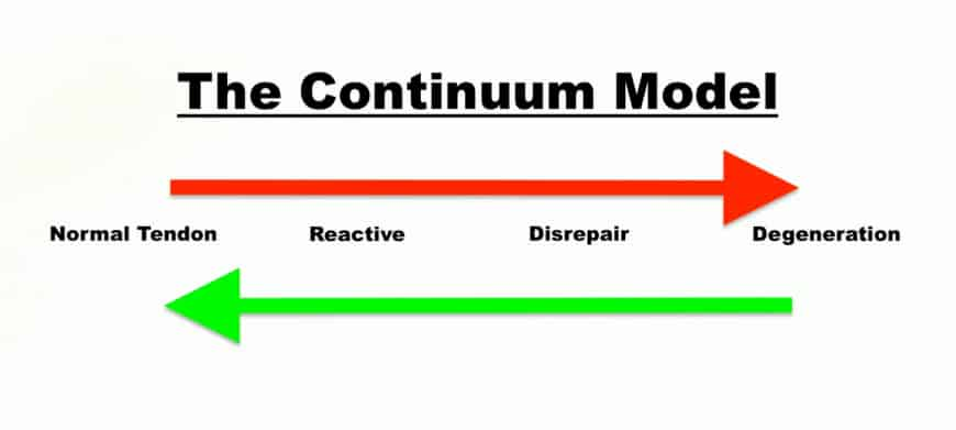 tendon pain continuum, physiotherapy fremantle