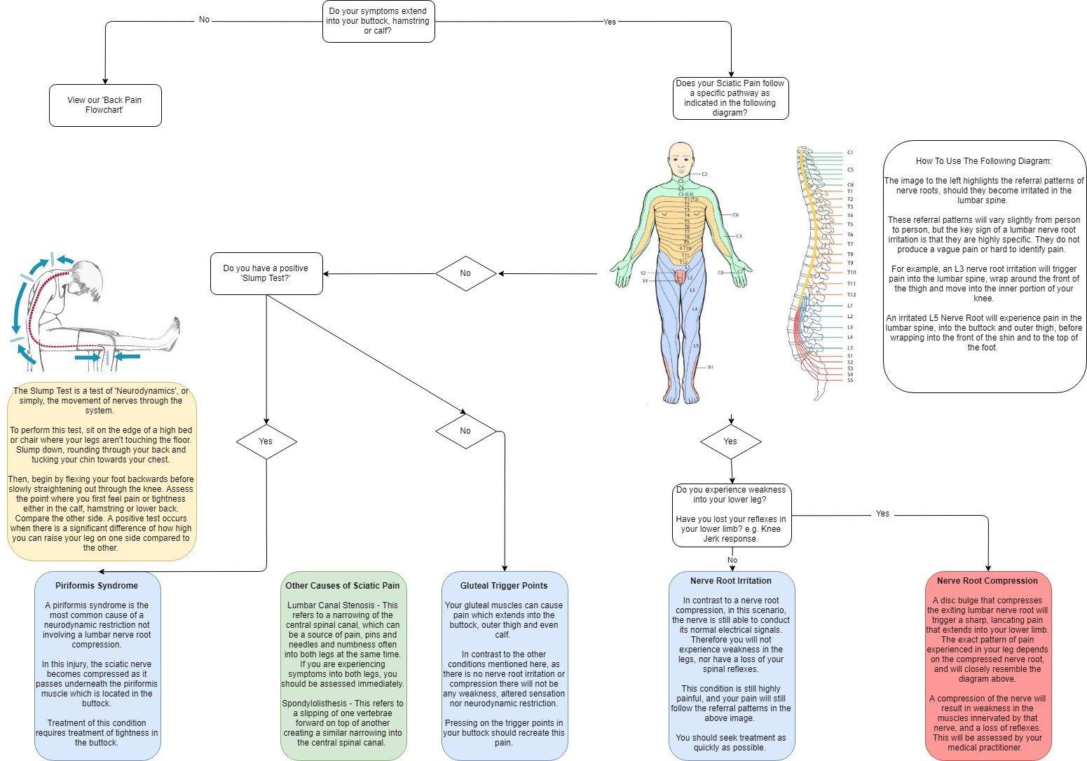 sciatica causes flowchart