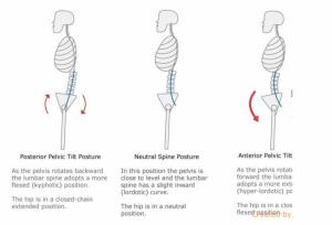 Training For Optimal Pelvic Alignment