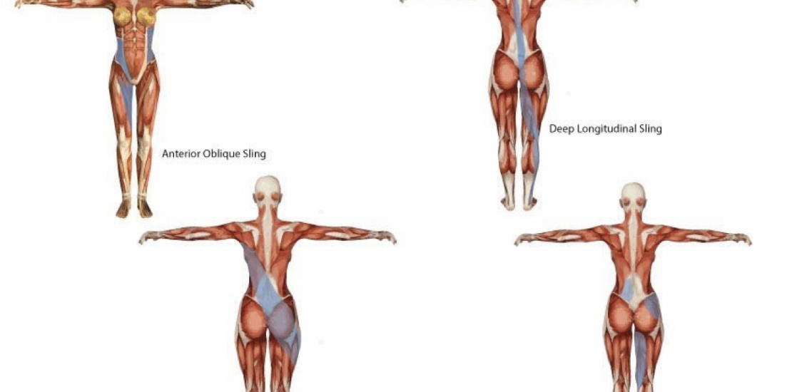 Ever wondered what a Sling system is?